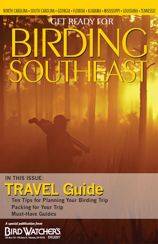 Get Ready for Birding: Southeast Travel Guide