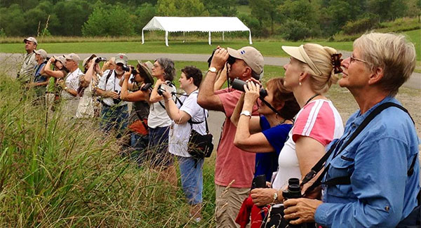 Warblers and Woodpeckers—June 5-7, 2015 | North Bend State Park—Cairo, WV
